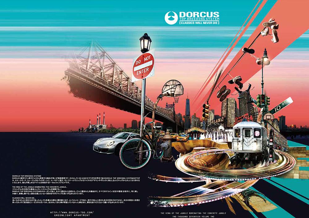 dorcus2017_1