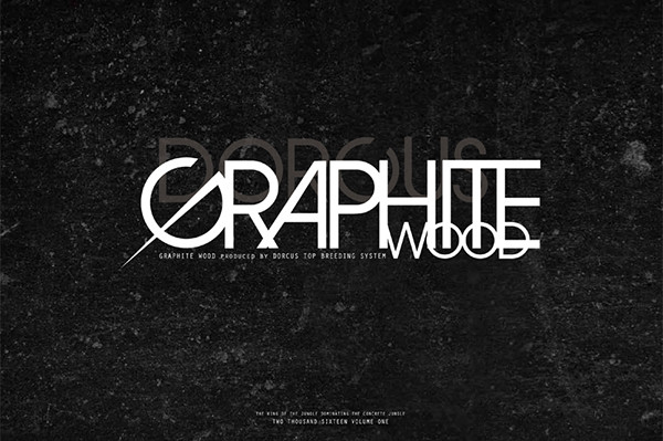 graphite_2016ss_catalog1