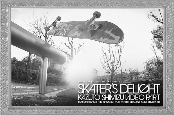 skaters-delight_600
